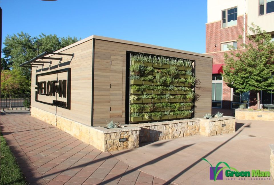 city view green wall project 1 960x650 c - Landscape Projects