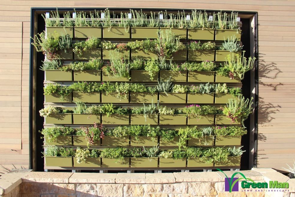 city view green wall project 3 - The Peloton Green Wall